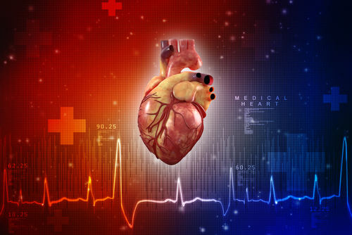 Researchers Discover Potential Predictive Profile of Heart Disease in Fabry Patients