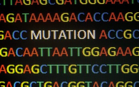 New GLA Mutation Leading to Low Enzyme Activity and Kidney Disease Found in Chinese Patient